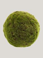 Groen (Mos/Blad)