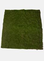 Moss Matt 100x100