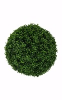 Boxwood Ball w/2592 lvs 46cm