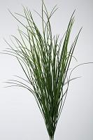 Plastic Grass x4 w/98lvs 95cm
