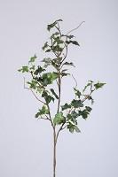Lace Ivy Stem x3 w/53lvs 60cm
