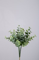Eucalyptus Pick 3 pcs/bundle  18cm