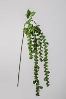 Hanging Amaranthus 68cm