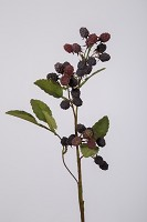 Black Berry Spray 71cm