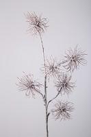 Chestnut Branch 83cm