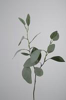 Eucalyptus Spray x2 w/15 LVS 46cm