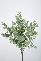 Eucalytus Pick 33 cm