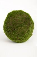 Moss Ball 28 cm