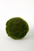 Moss Ball 20 cm