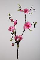Magnolia Spray x2 105cm