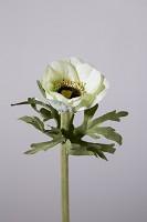 Single Anemone w/3 lvs 36cm