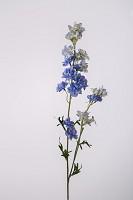 Delphinium Wild x2 w/19flrs 77cm