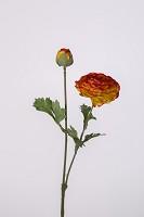 Ranunculus Spray x2 w/4 set lvs 48cm