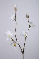 Mini Magnolia Spray 90cm