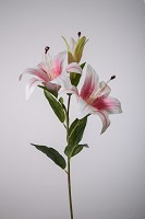 Lily Spray 80cm