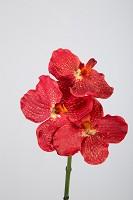 Vanda Orchid Pick 31 cm