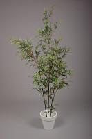 Mini Black Bamboo Tree w/1309 lvs 199cm