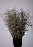 Small Grass w/pot 85cm