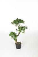 The Pine Tree Pot 80 cm