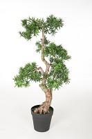 The Pine Tree Pot 110 cm