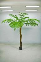 Plastic Alsophila Tree w/123lvs 250cm