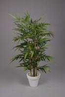 New Bamboo Tree x 6 w/832lvs 150cm