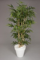 New Bamboo Tree w/1216lvs 180cm