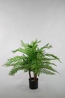 Plastic Alsophila Tree w/36lvs 40cm