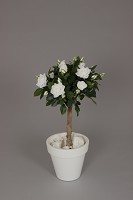 Lady Rose Ball 90cm White
